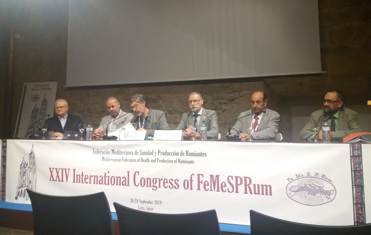 Grupo Operacional em Congresso Internacional em Espanha